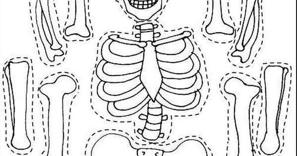 malvorlagen halloween skelett  ausmalbilder