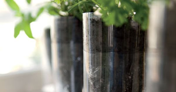 Self Watering Plastic Bottle Herb Gardens by Naomi Shulman, familyfun: Upcycle plastic