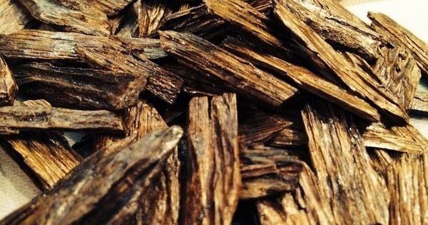 كل ما تريد معرفته عن افضل عود خشب 2021 In 2021 Wood