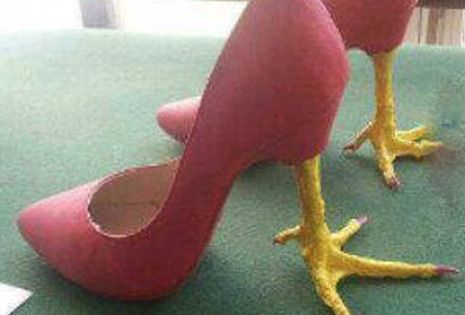 High Heel Chicken Feet Shoes ---- funny pictures hilarious ...