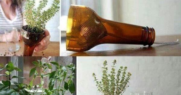 Comment couper bouteilles en verre bouteille verre vin - Comment couper une bouteille en verre ...