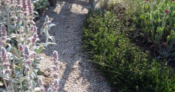 Crushed oyster shells for the garden pinterest the o for Crushed oyster shells for landscaping