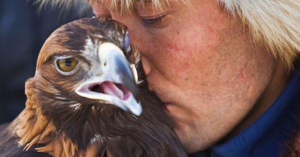 Espectaculares Imagenes De La Caza Con Aguilas En Kazajistan Animals Eagle Hunter Eagle