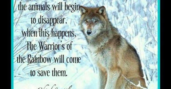 warriors of the rainbow | heritage | pinterest | wölfe, wolfspirit