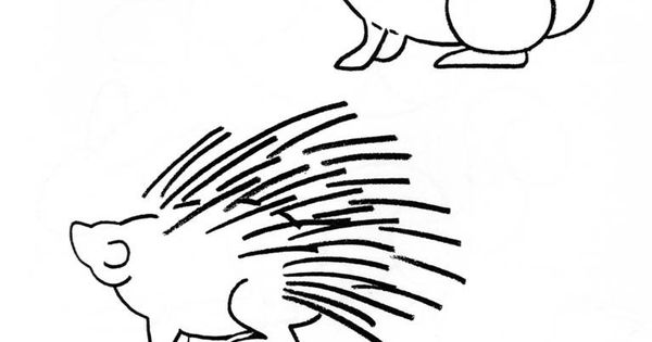 how to draw a porcupine step by step easy