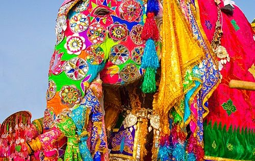 Indian colors Elephant Festival, Jaipur, Rajasthan, India