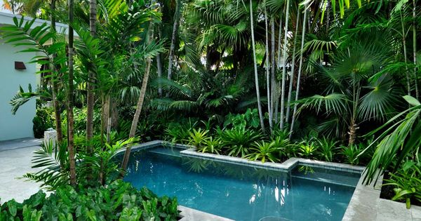 10 different and great garden project anyone can make 9 for Pool design garden