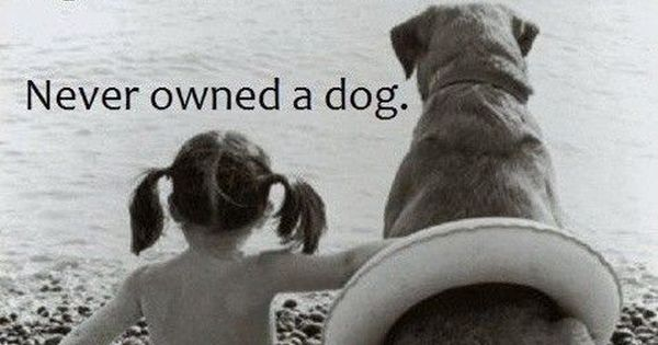 Oh so true, love my dogs!
