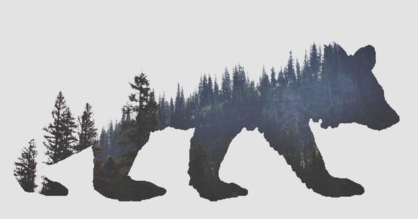 California Bear. Love this home state tribute because it's intertwined with nature.