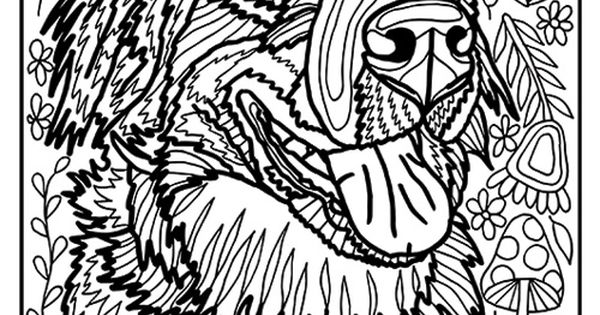 B Af Bea E Ba likewise Hard Owl Coloring Pages For Adults further Df D Faf C B D F Afdb Candy Skulls Sugar Skulls furthermore Magic Mandala Coloring Pages Android Screenshot further Fox Coloring Pages X. on detailed coloring pages for adults