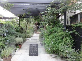 鎌倉 カフェ ガーデンハウスとスタバ ガーデンハウス 現代庭園 ガーデン