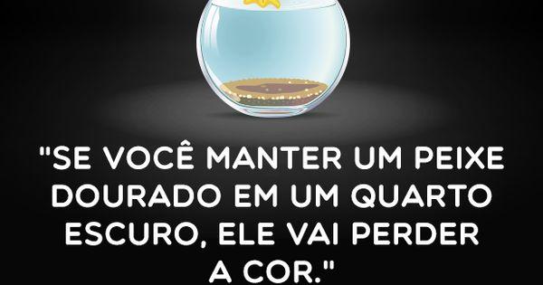 Ingl&ecirc;s: O Segredo Para Falar Ingl&ecirc;s Como Um Nativo Em 6 Meses Para Pessoas Atarefadas (Brazilian Portuguese Edition) (English, Como Aprender, aprender ..</p><p><br></p><p><a href=