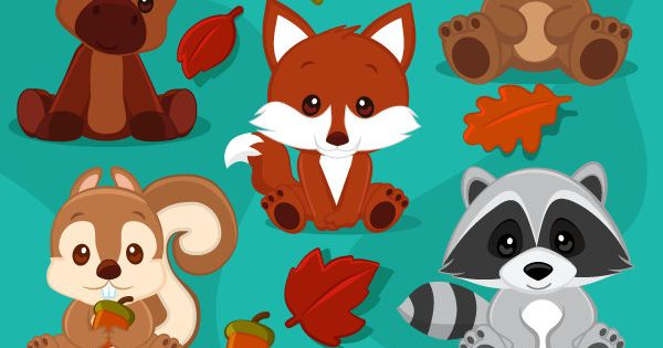 baby woodland animals clipart  baby fox  baby squirrel  baby moose  baby raccoon  baby bear