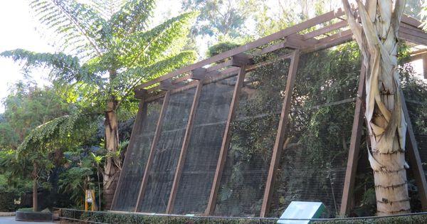 Foyer Luxury Zoo : Asian passage hornbill aviaries exhibits