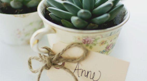 10 DIY Planters - Teacup Planters