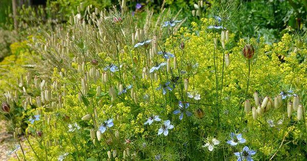 Jardin plume jardin champ tre jardin anglais for Jardin anglais pinterest