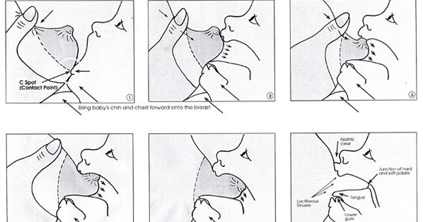 Proper Latch diagram. This site saved me when I was first nursing!