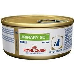 Royal Canin Veterinary Diet Urinary So In Gel Canned Cat Food 24 5 8 Oz Learn More By Visiting The Image Link This Canned Cat Food Cat Food Food Animals