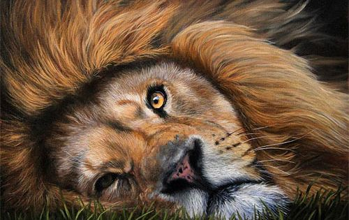 How To Paint Fur Lion Painting Tutorial By Jason Morgan