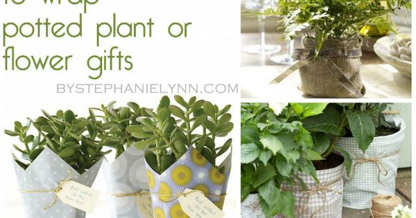 10 Creative & Crafty ways to wrap potted plants and Flowers~ Use