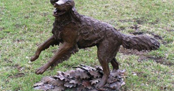 Golden Retriever Running Through Oak Leaves Alpine Utah Dog