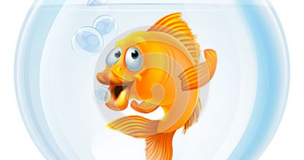 Cartoon Goldfish In Bowl Cartoon Goldfish Goldfish Cartoon