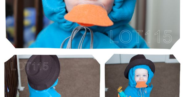 Phineas & Ferb Perry the Platypus Costume