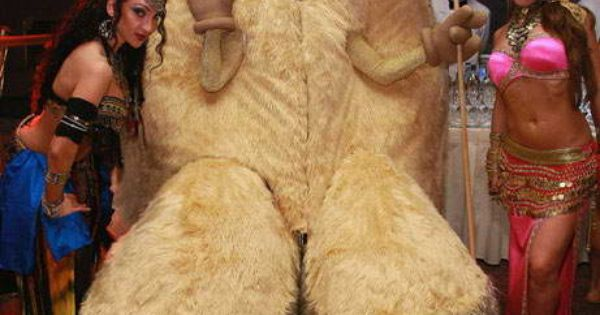 The-Biggest-Camel-Toe-In-The-World | Picture Of The DAY ...