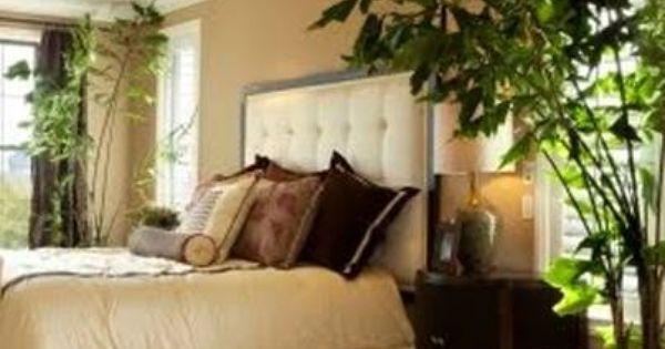 Vastu tip for bedroom indoor plants bring freshness in the house but avoid placing fresh plants - Indoor plant for bedroom ...