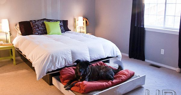 Doggie trundle bed. The Cottage Market: 25 Fabulous DIY Pet Bed ideas!