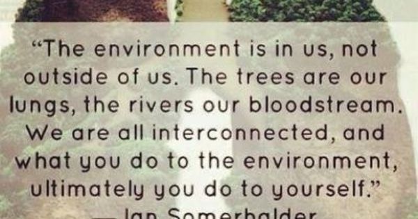 The environment is in us, not outside of us.