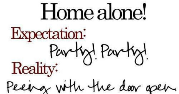 Home Alone. True story, true story.