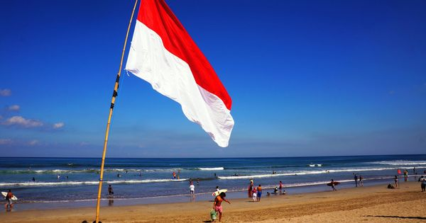 flag day 2013