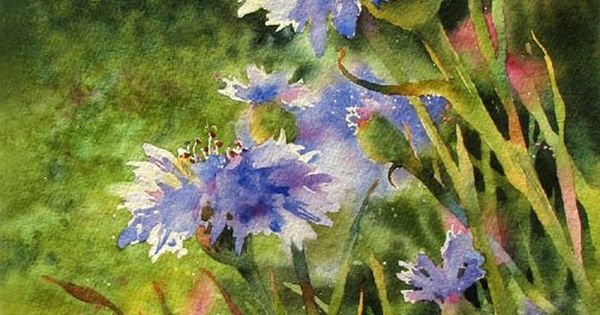 Susan Crouch watercolor - blue flowers