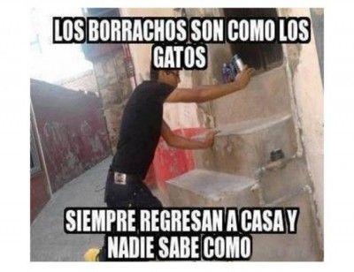 Borrachos Chistosos Funny Friday Memes Funny Photos Of People Humor