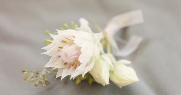 #boutonniere Photography: We Heart Photography - weheartphotography.com Planning: Carter & Cook Event