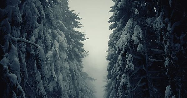 Winterwonderland looks terrifying /// wanderlust travel