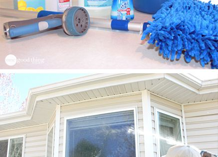 Streak Free Window Cleaner No Squeegee Required Nature