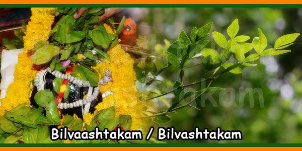 Bilva Patra 108 Nama Stotram Shiva Purana Shiva Stotram In Kannada