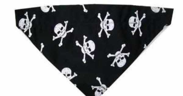 Ship Mate Pirate Skull And Crossbones Dog And Cat Bandana Cat Bandana Skull And Crossbones Pirate Cat