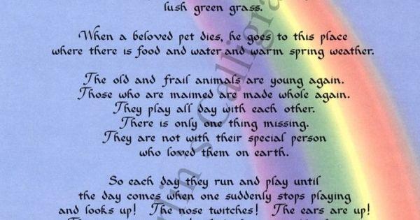 picture relating to Rainbow Bridge Poem Printable Version referred to as 100+ Pet dog Decline Rainbow Poem Printable yasminroohi