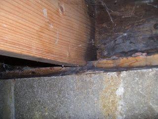 How To Fix And Repair Floor Joist Rot Repair Floors Wood Repair Repair