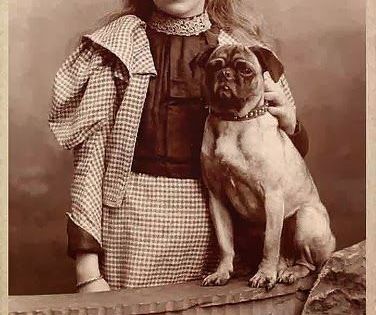 Sooo Sweet Standing There With Her Pug Pug Photos Dog