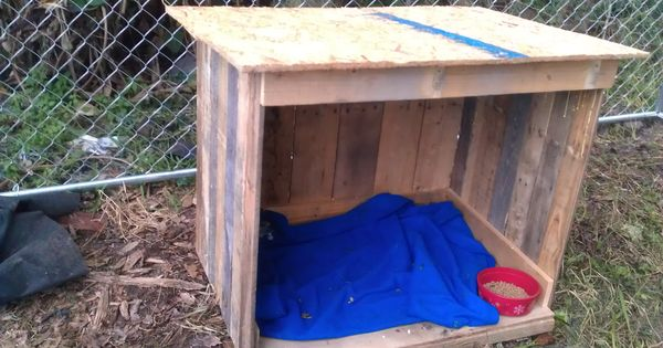 Goat House Made Out Of Free Recycled Pallets Green