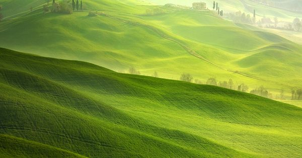 Fresh Countryside Photography by Marcin Sobas