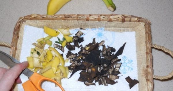 Dried Banana Peels as a Plant Fertilizer Bananas are not only wonderful