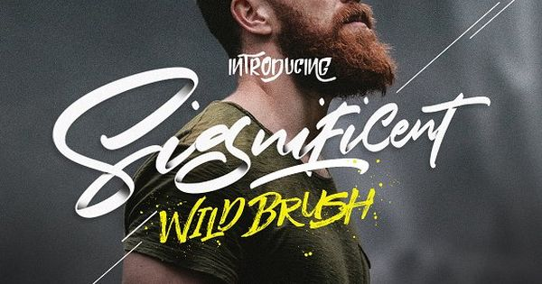 25%OFF – Significent Wild Brush by Dirtyline Studio on @creativemarket