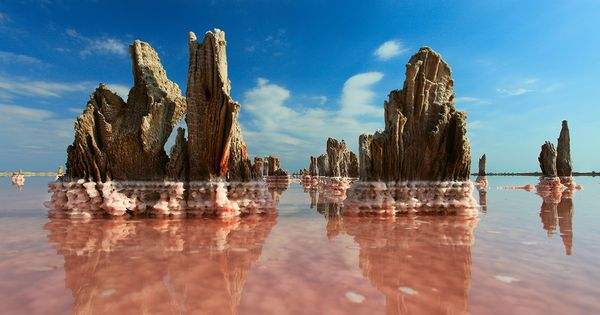 National Geographic, microorganisms give the water the red color
