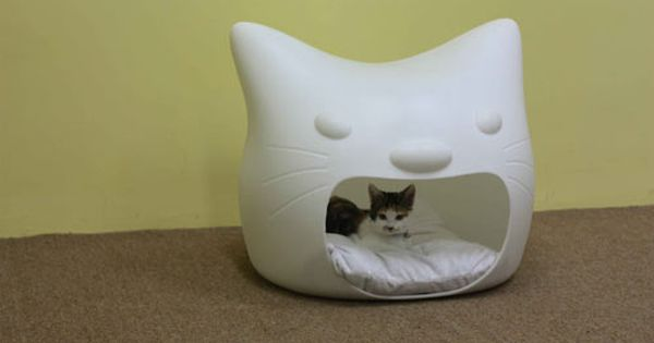 Cute cat house!
