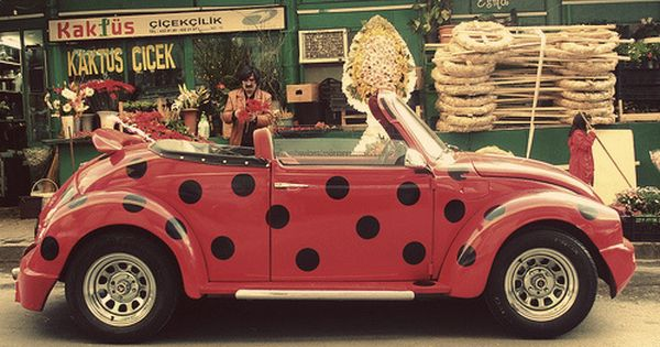 Punch Buggy Car >> Polka dot VW. It's a Lady Bug! | Adorable, Love and Life ...